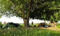 Camping amongst the irrigation canals feeding the endless cotton and other crops. Near Angren, Uzbekistan.