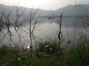 Near Gumi, South Korea.
