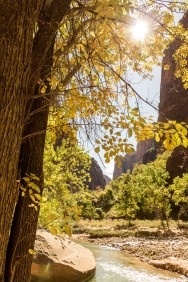 Day off in Zion. Walking up through the Narrows at the end of the Canyon. Zion Canyon, UT, USA