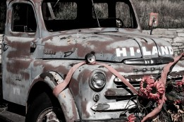 Awesome old truck. Looks like it could have been in a horror film. Jeepers Creepers perhaps? Near Mt Carmel Junction, UT, USA