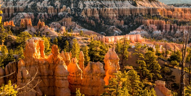 The hoodoos of Bryce Canyon. Despite it's name it's not actually a canyon because it wasn't formed by a river but rather water seeping away and eroding rock to form the hoodoos. (Something like that anyway) Bryce Canyon, UT, USA