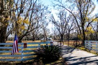 Beautiful hunting ranch in the countryside. Near Perry, FL, USA
