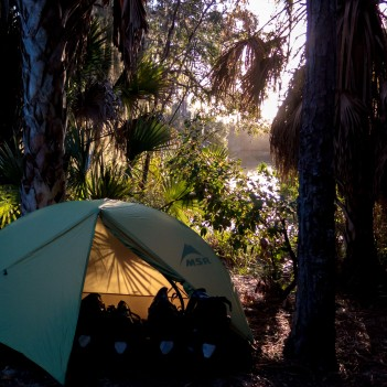 The penultimate night of camping. What a beautiful place to perch. Reece did however wakeup to the sound of a gator crunching it's dinner down by the river. Sarasota, FL, USA